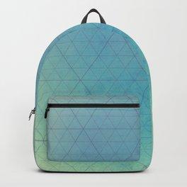 Blue Triangulation Backpack