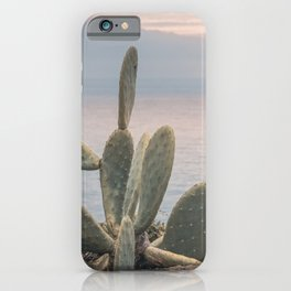 Sunset With Cactus Atlantic Ocean View iPhone Case