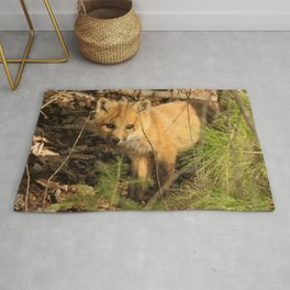 Shy fox kit Rug