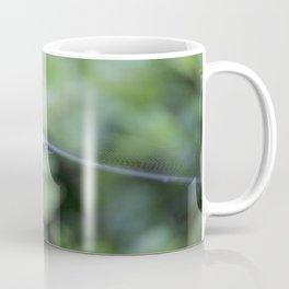 Spiderweb of nature Coffee Mug