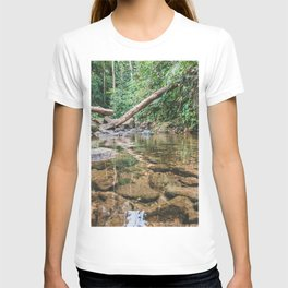 Forest is our country treasure, we have to protect it from harm. T-shirt