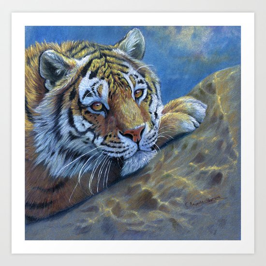 Tiger on the rock CC117 Art Print