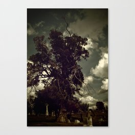 thousand years series (old soul) Canvas Print