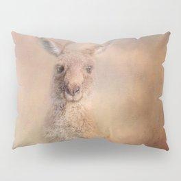 Meet The Neighbour Pillow Sham