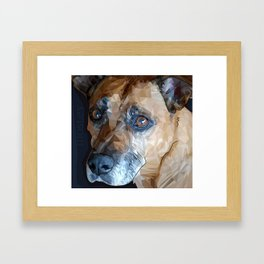 Mosley Dog Framed Art Print