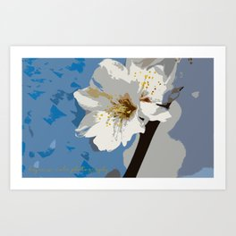 Almond Blossoms Graphic 2 Art Print