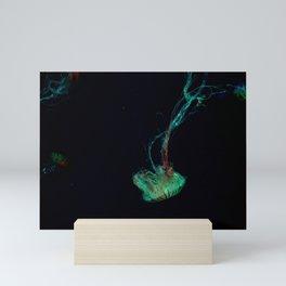 Japanese Sea Nettle - Jellyfish Mini Art Print