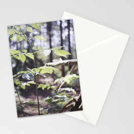 remnant Stationery Cards