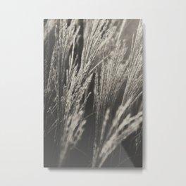 Caught in Wind (Version 3 - Platinum) Metal Print