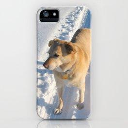 Dogs | Dog | Waiting Dog | Golden Lab iPhone Case