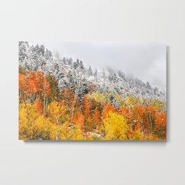 Fall to Winter Metal Print