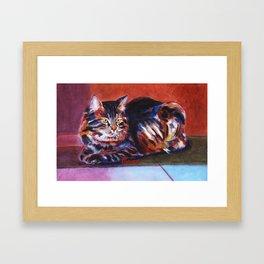 Terra Cotta Tabby Framed Art Print