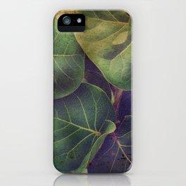 Sea Grape iPhone Case