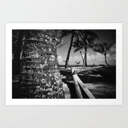 Kuau Beach Palm Trees and Hawaiian Outrigger Canoe Paia Maui Hawaii Art Print