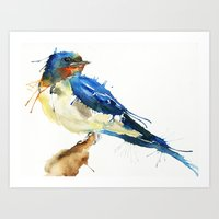 swallow Art Prints featuring Swallow by Meg Ashford