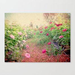 Romance in the fields Canvas Print