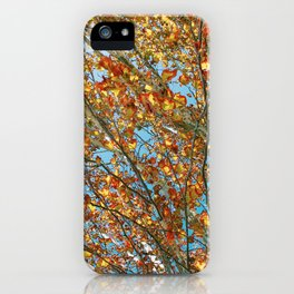 Leaves at Matilda Bay iPhone Case