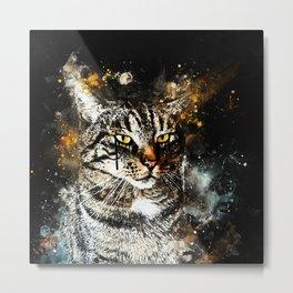 koko the cat wsstd Metal Print