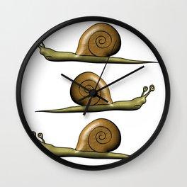 Snail - slowly animal Wall Clock
