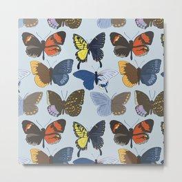Gynandromorph Butterfly Metal Print