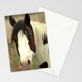 Heterochromian  Stationery Cards