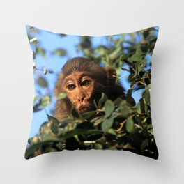 RHESUS MACAQUE MONKEY Throw Pillow