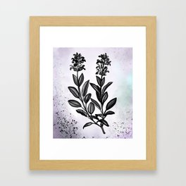 Sage Botanical Illustration Framed Art Print