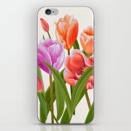 Colorful Flower Bouqet Painting iPhone Skin