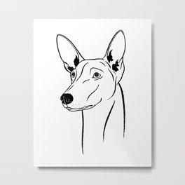 Pharaoh Hound (Black and White) Metal Print