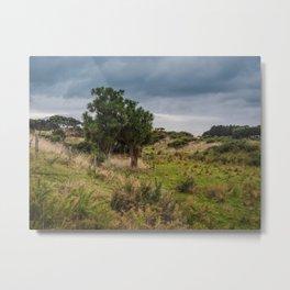 Wetland Paddock Metal Print
