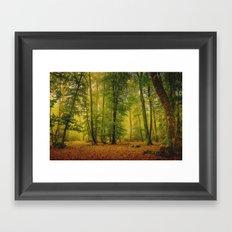 Enchanted Forest Framed Art Print