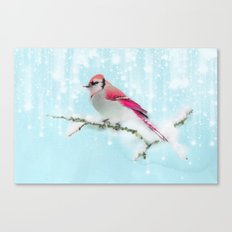 Winter bird - 2 Canvas Print