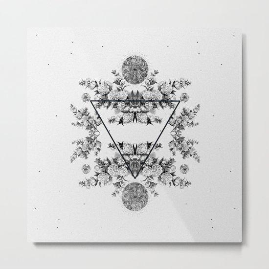 CRUX II Metal Print