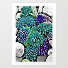 succulents Art Print