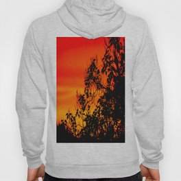 Silhouette of leaf with red autumn sky #decor #society6 Hoody