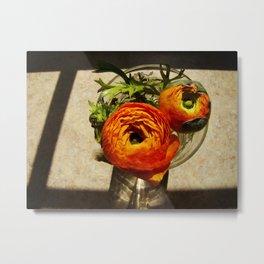 Orange-Ade Metal Print