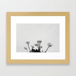 Black & White Tulips Framed Art Print
