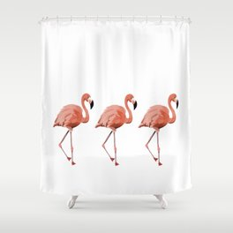 A Flamboyance of Flamingoes - Flamenco - 57 Montgomery Ave Shower Curtain
