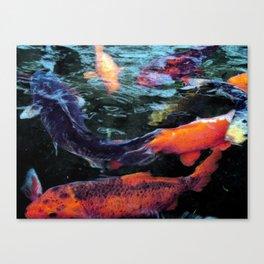Koi trouts Canvas Print