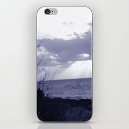 Back In The Wild iPhone Skin