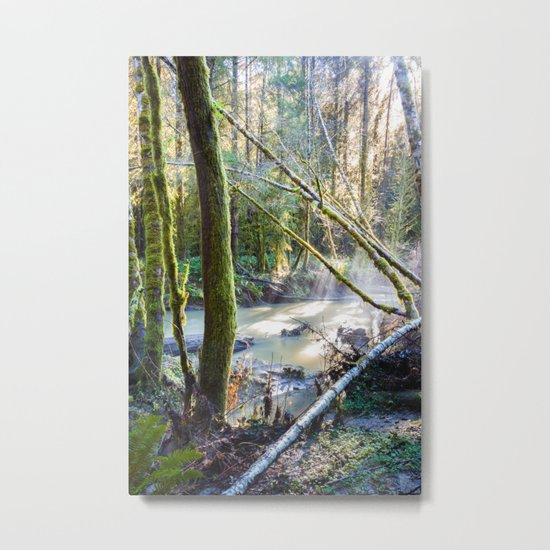South Fork Metal Print