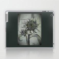 Sunflower Sketch DRPA151009a Laptop & iPad Skin