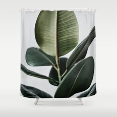 Rubber Plant Shower Curtain