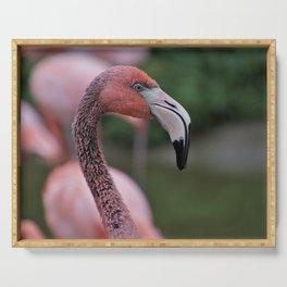 Pink Flamingos Portrait Serving Tray