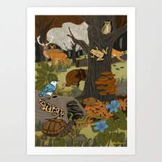 Ecosystem: Forest Art Print