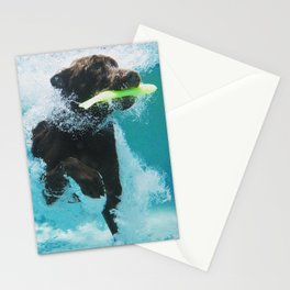 Dog Aquatic Stationery Cards
