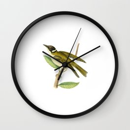 White-Collared Honeysucker Wall Clock