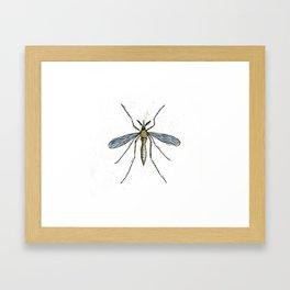 Mosquito Control Framed Art Print