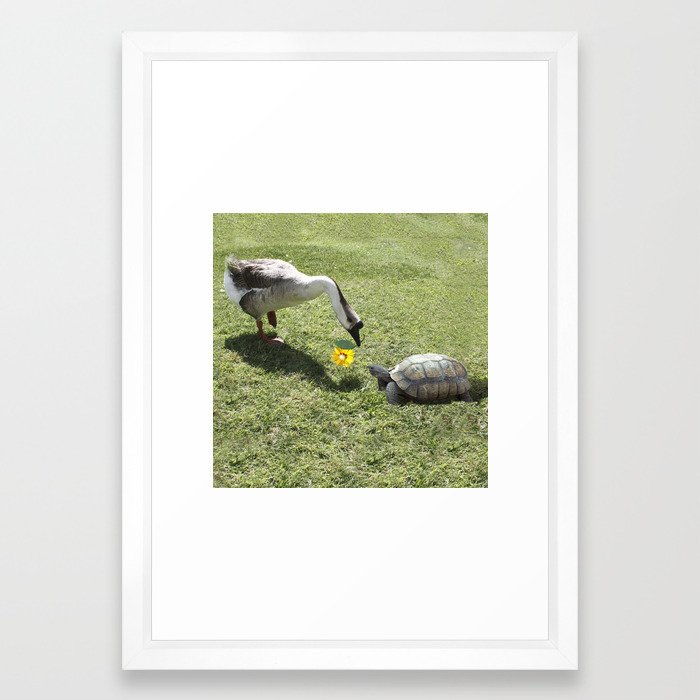 The Turtle and the Goose Framed Art Print by gx9designs | Society6