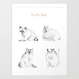 Fur For Four Art Print